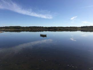 Limfjord Dänemark